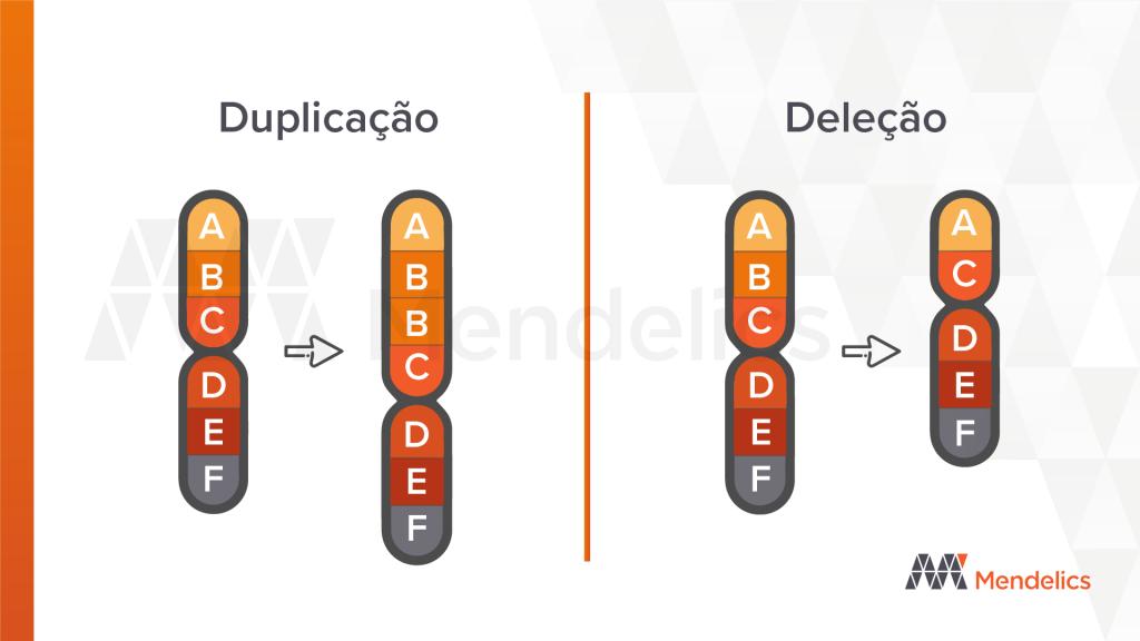 deleção e duplicação cnv