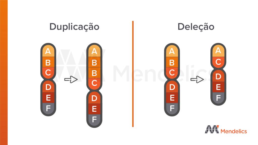 deleção duplicação cariotipo