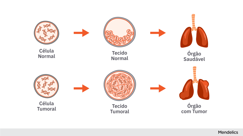 Imagem mostrando a diferença na multiplicação celular do tecido normal e do tecido canceroso