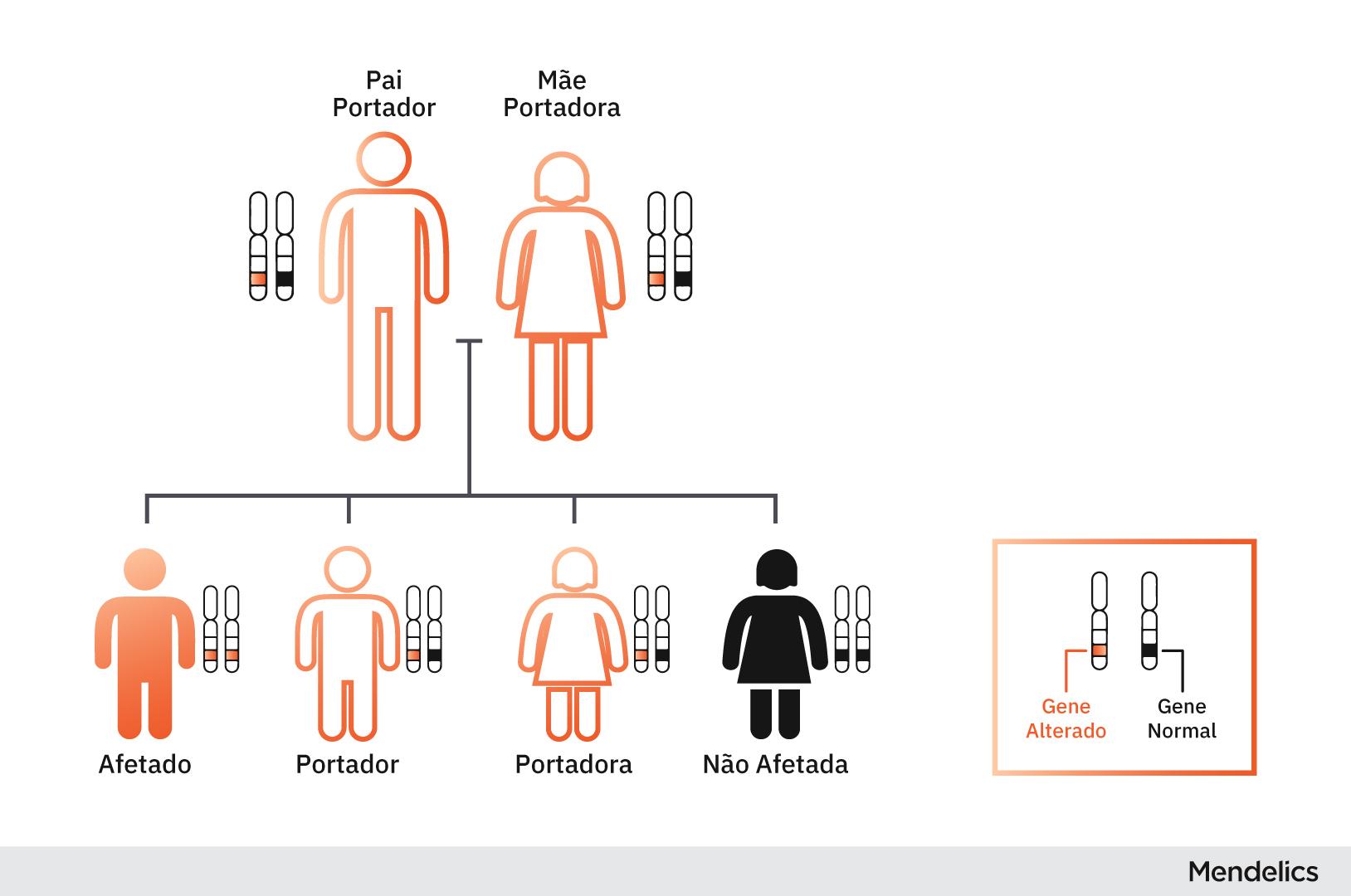 Figura representando graficamente como se dá a herança recessiva