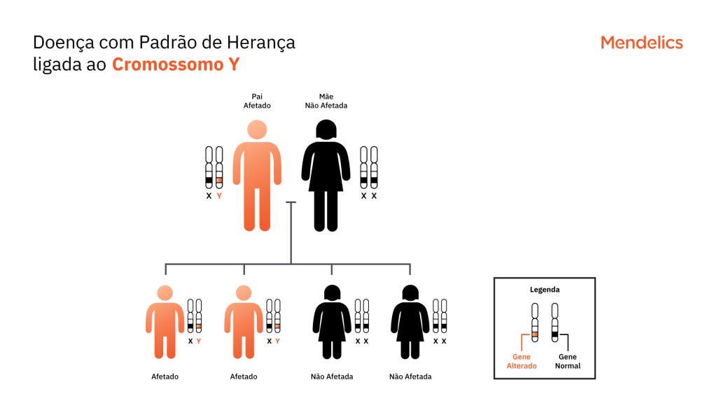 Heredograma representando o padrão de herança ligado ao Y