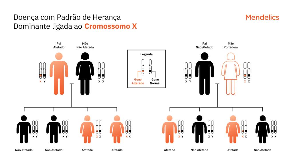Heredograma representando o padrão de herança dominante ligado ao cromossomo X