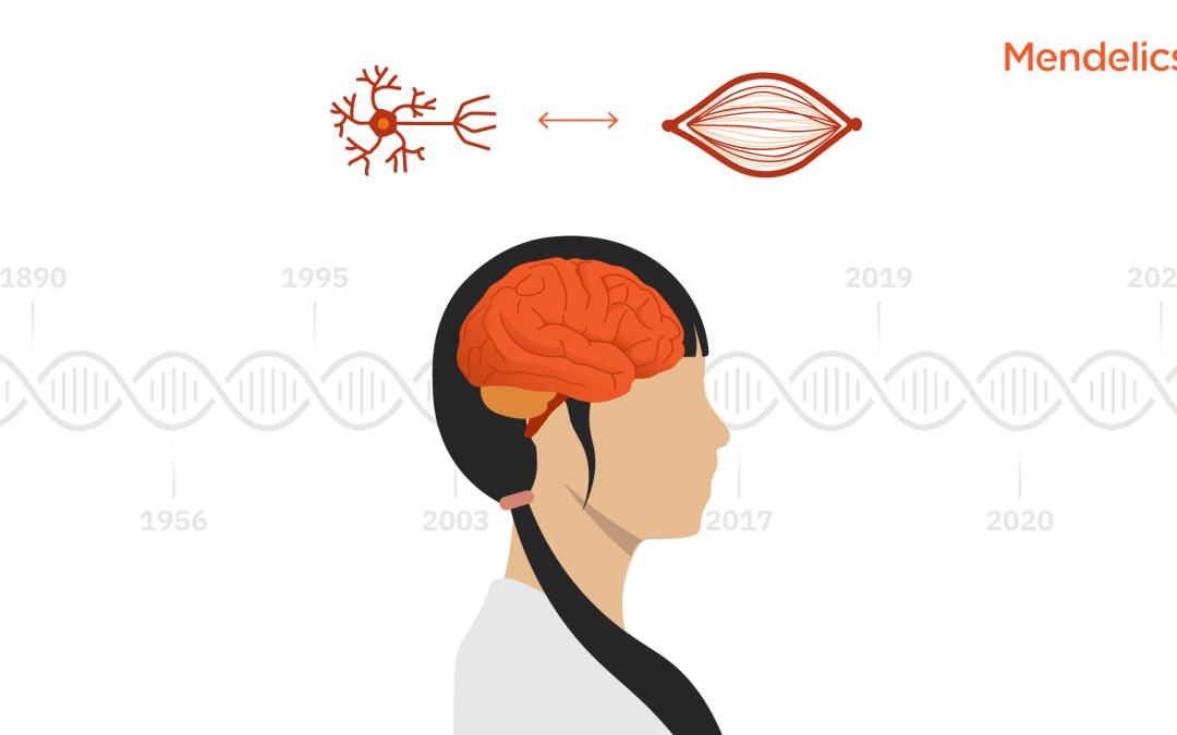 Atrofia Muscular Espinhal: o impacto da genômica em 130 anos de pesquisas