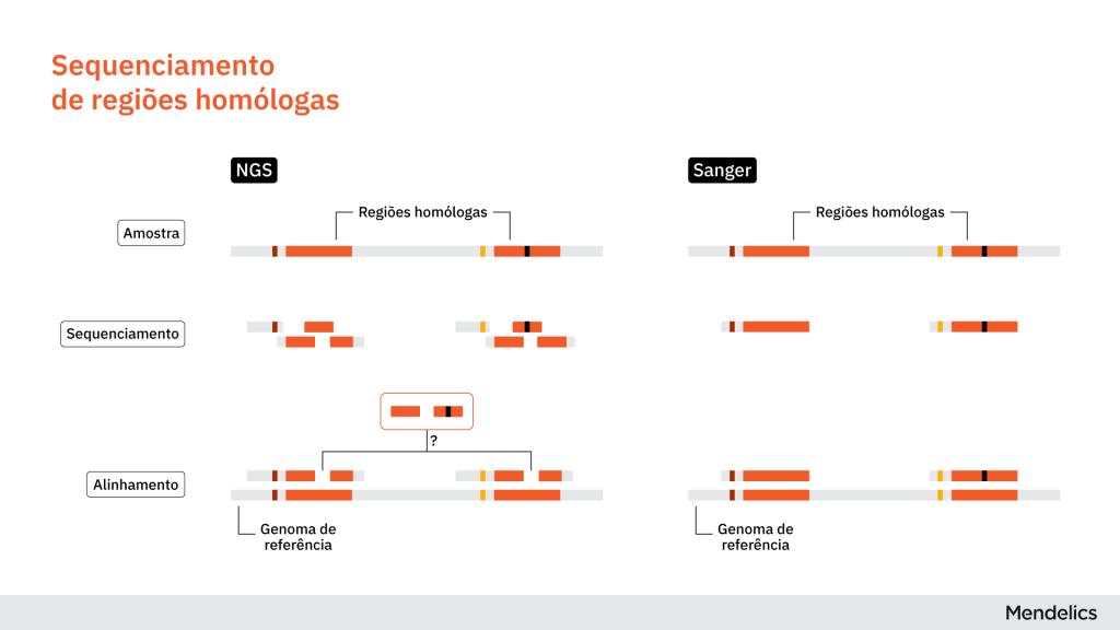 Ilustração comparando a análise de regiões homólogas (semelhantes) por sequenciamento de nova geração (NGS) e por sequenciamento Sanger