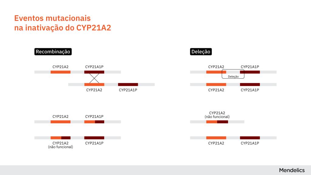 Ilustração dos eventos de recombinação e deleção na região do gene CYP21A2 e do pseudogene CYP21A1P que resultam em Hiperplasia Adrenal Congênita (CAH) com deficiência da enzima 21-hidroxilase.
