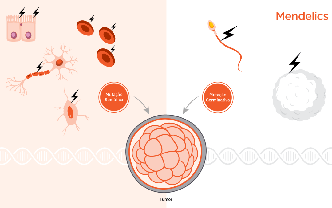 Câncer: Mutação somática x germinativa